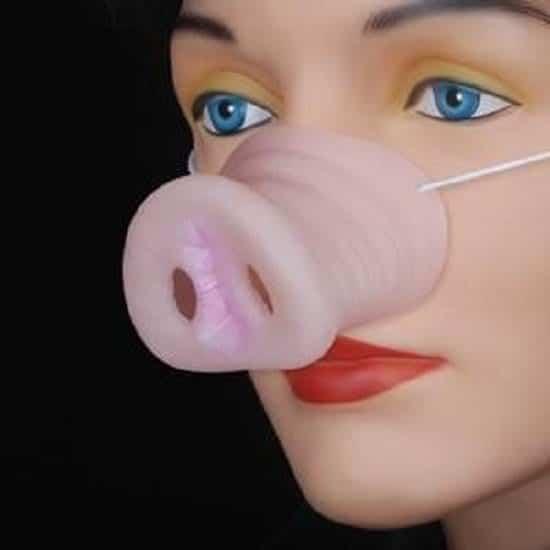 Pig Nose 1